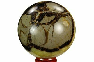 "Buy 3"" Polished Septarian Sphere - Madagascar - #122917"