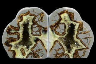 Septarian - Fossils For Sale - #123837