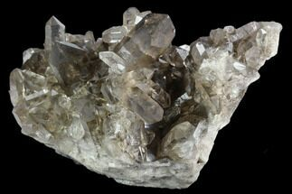 "Buy 3.7"" Smoky Quartz Crystal Cluster - Brazil - #124570"