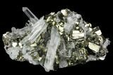"2.7"" Gleaming Pyrite & Quartz Crystal Association - Peru - #124439-1"
