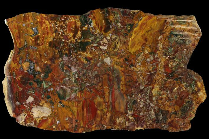 "15.3"" Stunning, Polished Jasper Slab - Marston Ranch, Oregon"