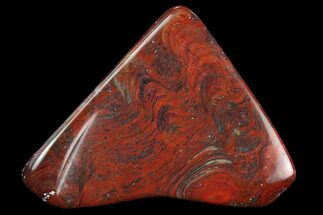 "1.8"" Polished Stromatolite (Collenia) - Minnesota For Sale, #126086"