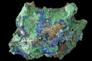 Azurite & Malachite - Fossils For Sale - #127521