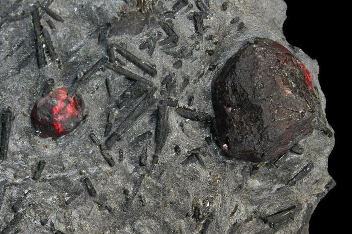 "2.7"" Plate of Two Red Embers Garnet in Graphite - Massachusetts"