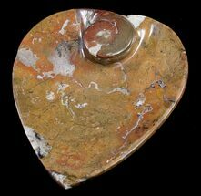 Buy Heart Shaped Fossil Goniatite Dish - #8863