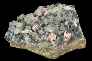 "Buy 3.2"" Cerussite Crystals with Bladed Barite on Galena - Morocco - #128014"