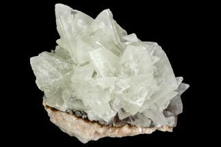 "2.25"" Fluorescent Calcite Crystal Cluster on Barite - Morocco For Sale, #128000"