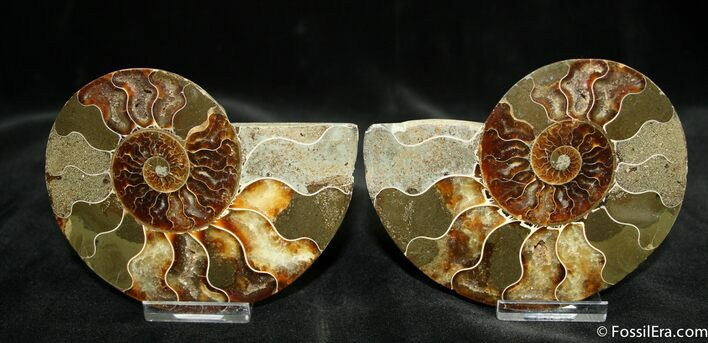 4.4 Inch Polished Pair From Madagascar