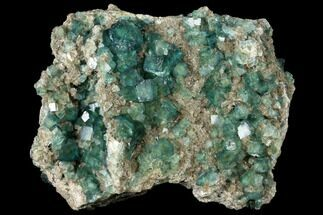 "Large, 8.8"" Wide Plate of Green Fluorite Crystals on Quartz - China For Sale, #128813"