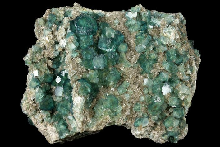"Large, 8.8"" Wide Plate of Green Fluorite Crystals on Quartz - China"