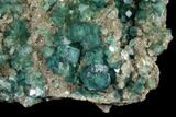 "Large, 8.8"" Wide Plate of Green Fluorite Crystals on Quartz - China - #128813-2"