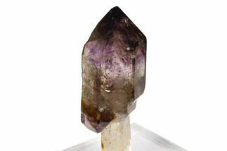 "2.5"" Shangaan Amethyst Scepter - Chibuku Mine, Zimbabwe For Sale, #129056"