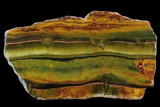 "9.8"" Marra Mamba Tigers Eye - Mt. Brockman (2.7 Billion Years) For Sale, #129122"