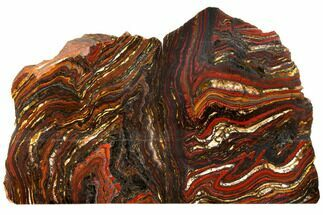 Tiger Iron Stromatolite - Fossils For Sale - #129429
