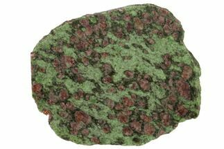 "Buy 3.6"" Pyrope, Forsterite, Diopside & Omphacite Slice - Norway - #131446"