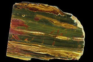 "13.3"" Marra Mamba Tigers Eye - Mt. Brockman (2.7 Billion Years) For Sale, #131174"