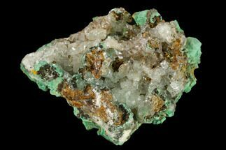 "2.9"" Malachite and Calcite Association - Zacatecas, Mexico For Sale, #132728"