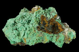 Malachite & Calcite - Fossils For Sale - #132735