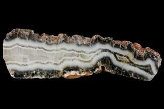 "9.4"" Polished Pilbara Agate Slab - Australia For Sale, #132944"