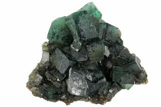 "2.5"" Fluorite Crystal Cluster -  Rogerley Mine For Sale, #132986"