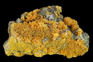 "1.85"" Orpiment and Barite Crystals on Pyrite - Peru For Sale, #133106"