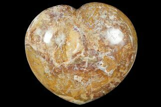 "Buy Large, 8.7"" Polished, Triassic Petrified Wood Heart - Madagascar - #133618"