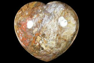 "Large, 8"" Polished, Triassic Petrified Wood Heart - Madagascar For Sale, #133619"