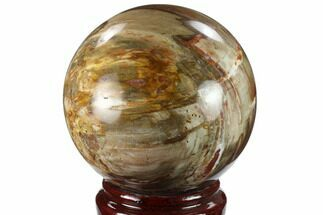 "Buy 4.3"" Colorful Petrified Wood Sphere - Madagascar - #133828"