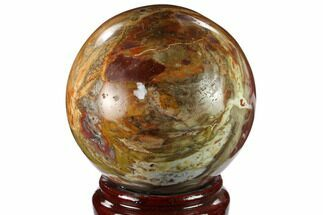 "4.1"" Colorful Petrified Wood Sphere - Madagascar For Sale, #133829"