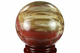 "Buy 4.35"" Colorful Petrified Wood Sphere - Madagascar - #133864"