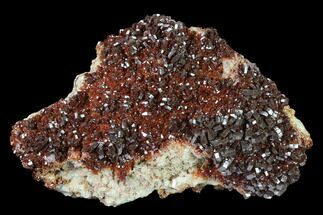 Vanadinite & Barite - Fossils For Sale - #134709