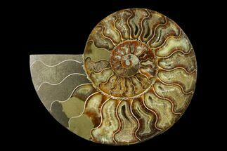 "Buy 6.3"" Agatized Ammonite Fossil (Half) - Madagascar - #135283"