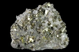 Pyrite, Chalcopyrite & Quartz - Fossils For Sale - #136197