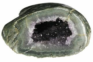 "Buy 6.8"" Wide, Purple Amethyst Geode - Uruguay - #135343"