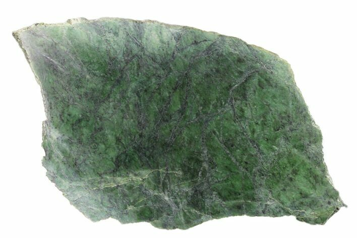 "13.5"" Polished Canadian Jade (Nephrite) Slab - British Colombia"