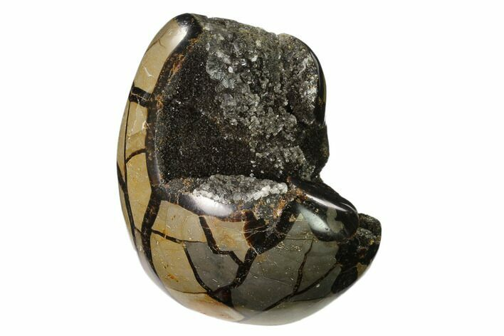 "4.7"" Polished Septarian Geode Sculpture - Barite Crystals"