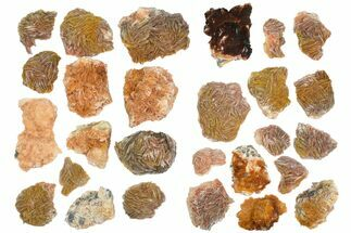 Barite - Fossils For Sale - #138054