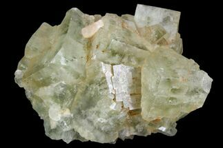 "Buy 1.7"" Light-Green, Cubic Fluorite Crystal Cluster - Morocco - #138235"