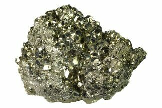 Pyrite - Fossils For Sale - #138144