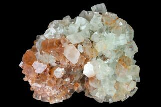"Buy 2"" Aragonite Twinned Crystal Cluster - Morocco - #139255"