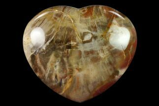 "Buy 4"" Polished Triassic Petrified Wood Heart - Madagascar - #139936"