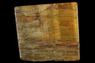 "1.4"" Polished Tiger's Eye Slab - South Africa For Sale, #140498"