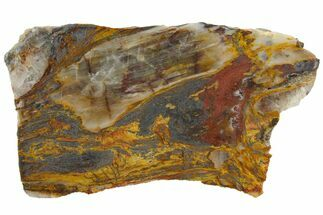 "Buy 4.6"" Colorful Binghamite Agate Slab - Minnesota - #141166"