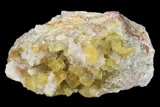 Fluorite & Quartz - Fossils For Sale - #141645