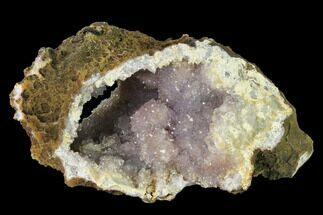 "7"" Amethyst Crystal Geode Section - Morocco For Sale, #141779"