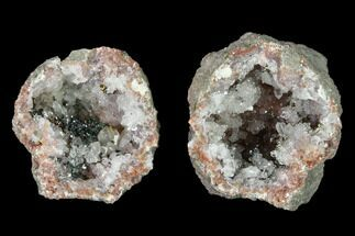 "1.3"" Keokuk ""Red Rind"" Geode with Iridescent Chalcopyrite - Iowa For Sale, #141503"