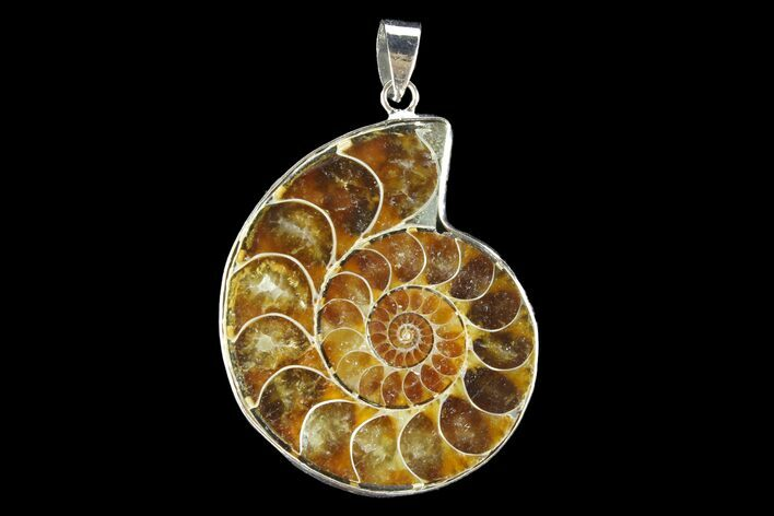 "1.55"" Fossil Ammonite Pendant - 110 Million Years Old"