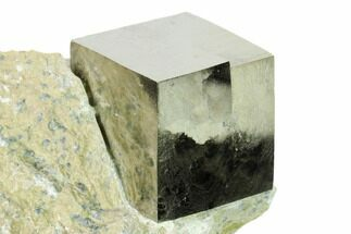 Pyrite - Fossils For Sale - #144051