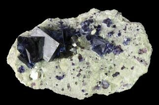 "Buy 3.05"" Purple-Blue Cubic Fluorite Crystals with Arsenopyrite - China - #146950"
