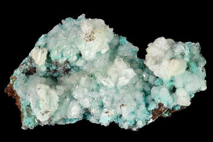 "1.7"" Aurichalcite and Calcite Association - Hidden Treasure Mine"